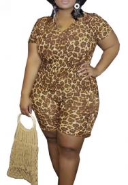 Women Fashion Leopard Short Sleeve V Neck Tops and Midi Pants 2 Piece Suit